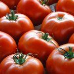 ممنوعیت صادرات گوجه فرنگی به اقلیم کردستان